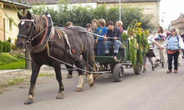 Sociální aspekty biodynamického zemědělství