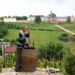 Vinné sklepy Kutná Hora, s.r.o.