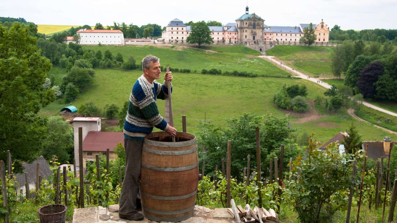 Míchání biodynamického preparátu roháček na vinici u zámku Kuks