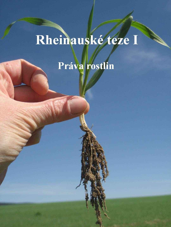 Rheinauské teze I - Znovuobjevení rostlin (O právech rostlin)