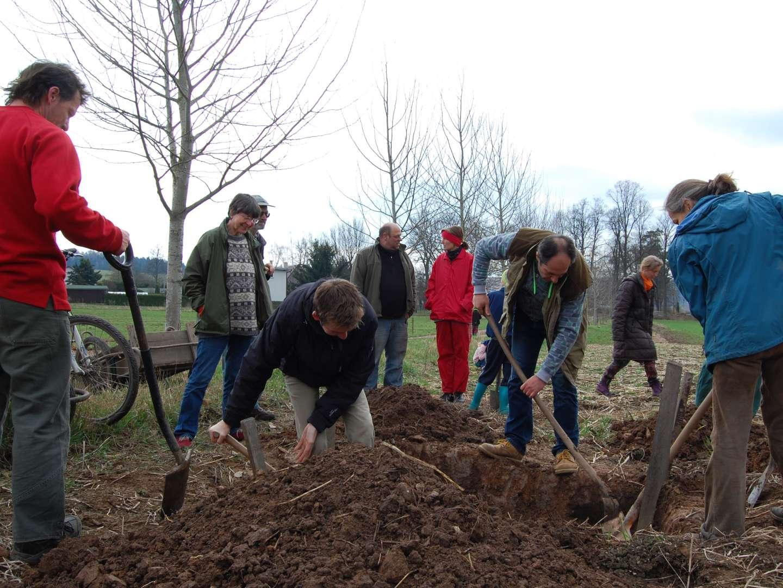Vykopávání biodynamických preparátů na farmě Fořt